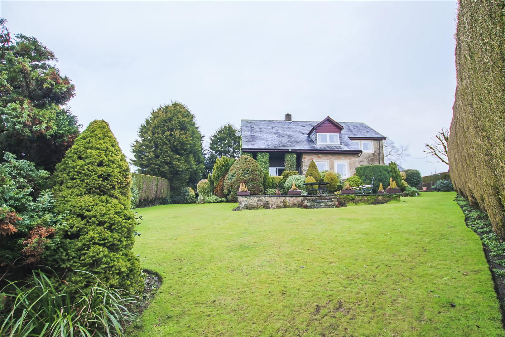 4 Bedroom Detached House For Sale - Rear Garden